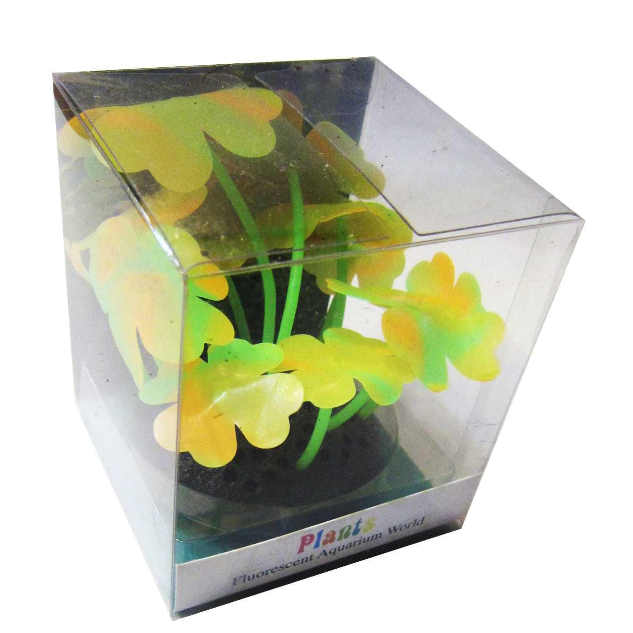 مرجان ژله ای پلنتس مدل fluorescent