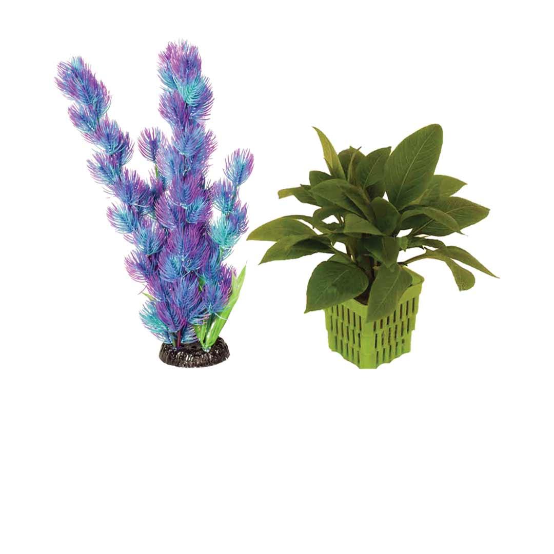 گیاه طبیعی و مصنوعی
