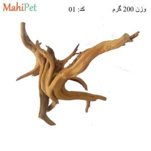 ریشه آبنوس